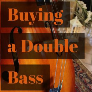 buying a double bass