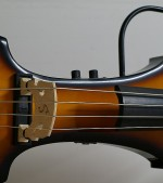 Bass shot of the day – Palatino Electric