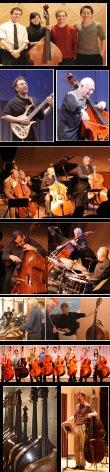 Arisona Bass Players.png